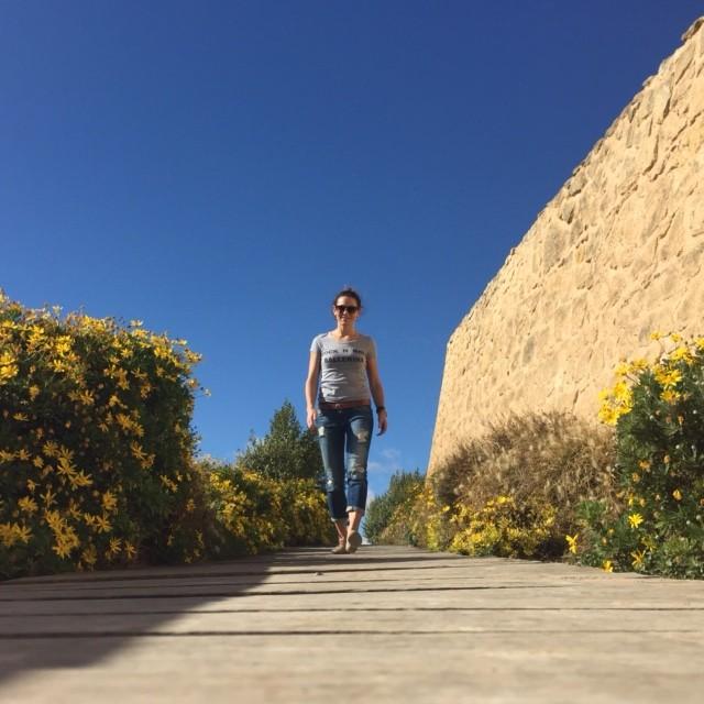 Alicante wandel