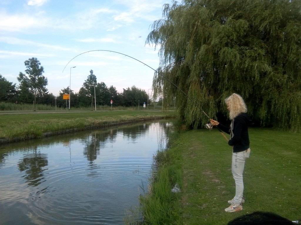 vissen dril