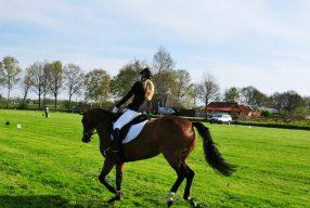 Is paardrijden wel een echte sport?