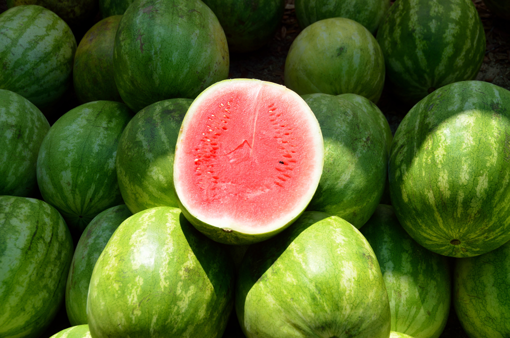 watermeloen recepten gezond